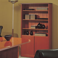 Office Bookcase, Wooden Bookcase with Doors