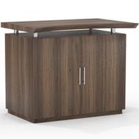 Modern Office Cabinet, Designer Cabinet
